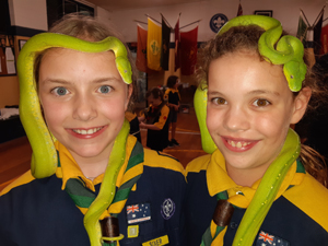 Green Pythons