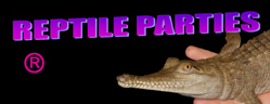 Reptile parties Melbourne Logo